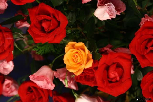 Um buquê de flores…