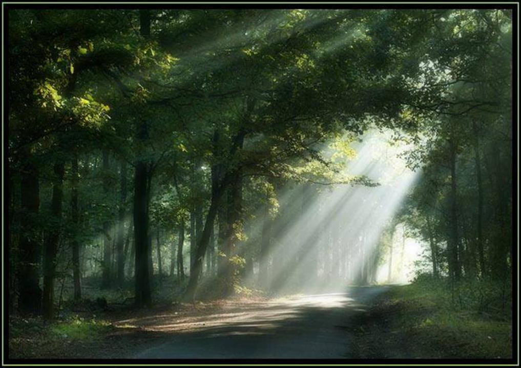 Os caminhos da vida…