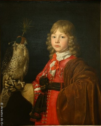 A nobre arte de adestrar falcões – II