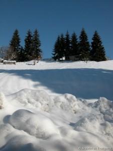 Mais branco que a neve…