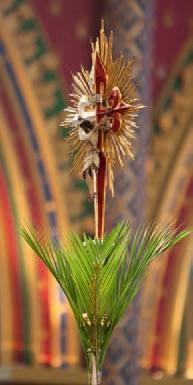 Después del Domingo de Ramos: ¿qué hacer con los ramos benditos?