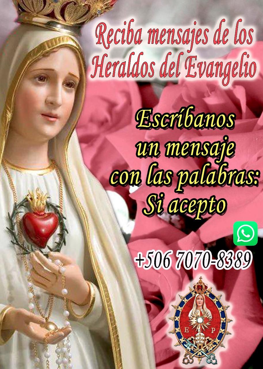 Whatsapp Heraldos