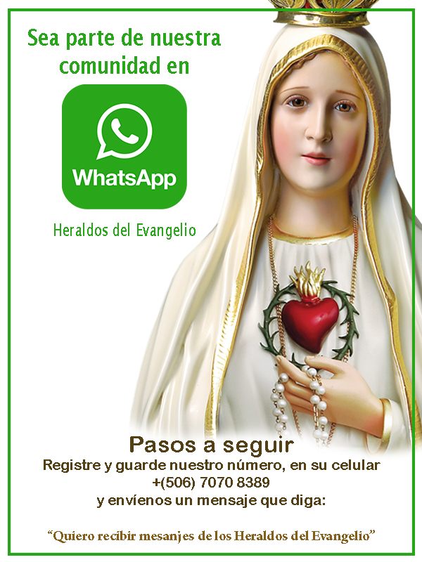 Whatsapp Heraldos