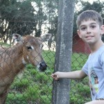Passeio ao zoo de Curitiba (11)