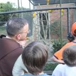 Passeio ao zoo de Curitiba (9)