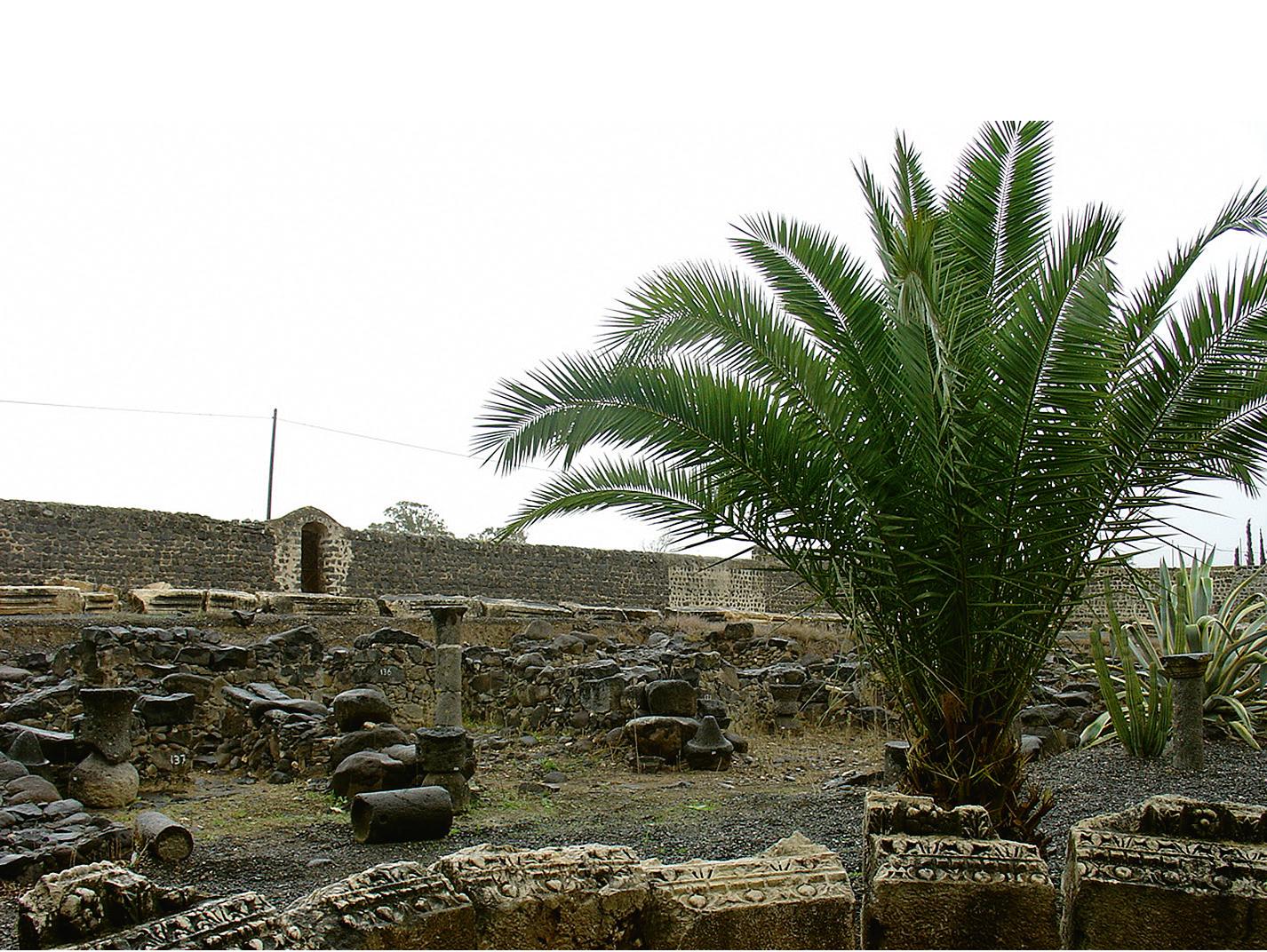 Rovine della città di Cafarnao – Terra Santa