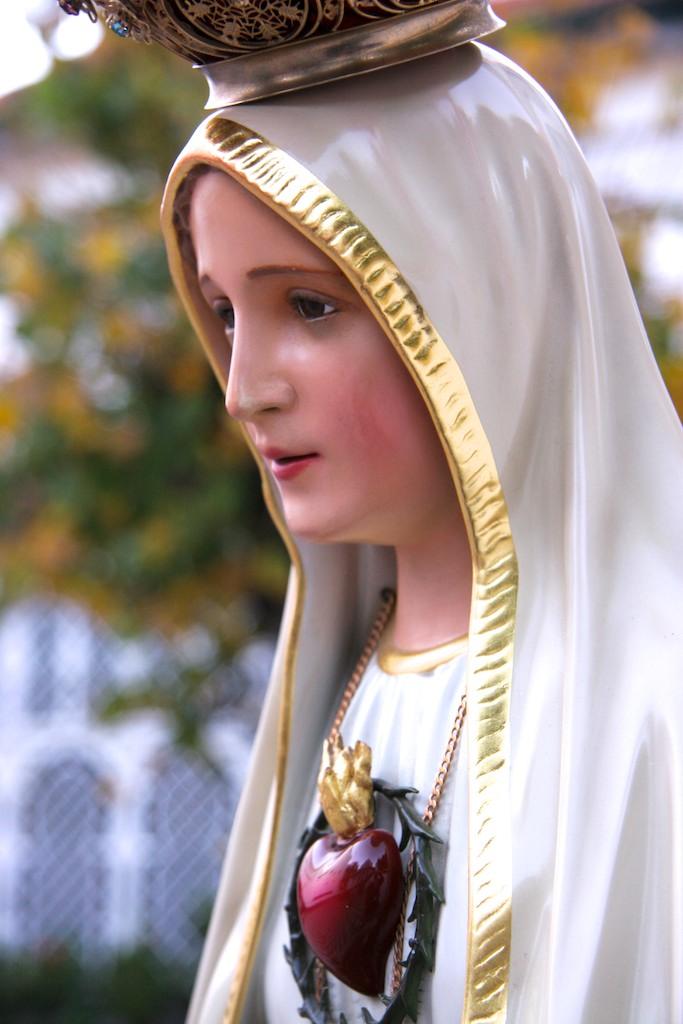 Heraldos del Evangelio en Argentina - Visita al Instituto Anunciación de María