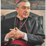 smaller picture of cardinal