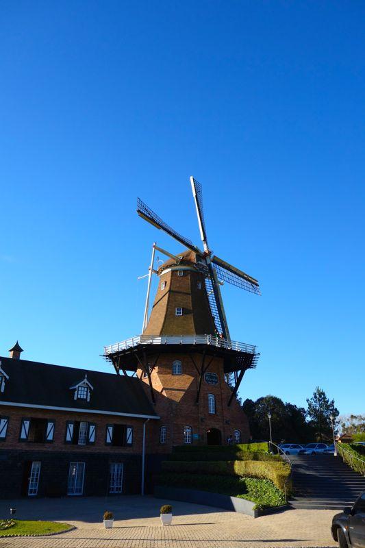 Visita à colônia holandesa Castrolanda