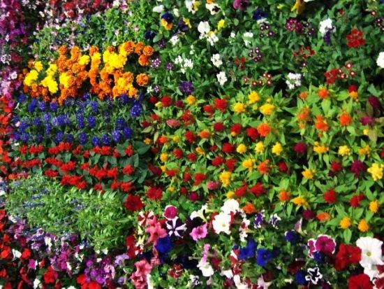 Arranjos de flores: fazem-no trabalhando ou rezando?