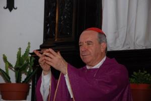 Cardenal dice sectores actúan contra Cristianismo