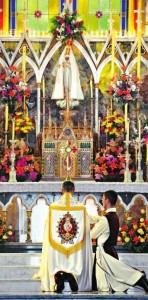adoração arautos
