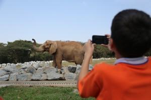 Jardim Zoológico e Gruta do Maquiné