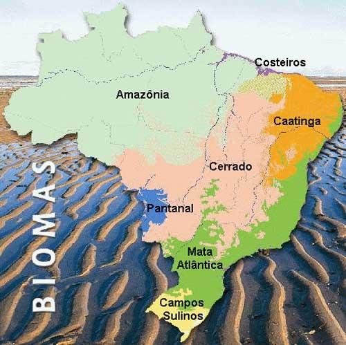 A área total é de aproximadamente 1.100.000 km²